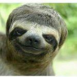 @dabpuff's profile picture
