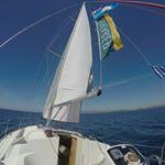 @seafarersailing_holidays's profile picture