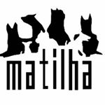 @matilhabr's profile picture on influence.co