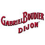 @gabrielboudier's profile picture
