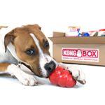 @kong.box's profile picture