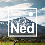 @meetned's profile picture on influence.co