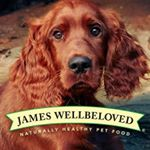 @wellbelovedpets's profile picture
