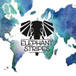 @elephantstripestravel's profile picture