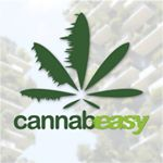 @official_cannabeasy's profile picture on influence.co