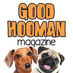 @goodhoomanmag's profile picture on influence.co