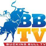 @buckingbulltv's profile picture on influence.co