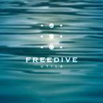 @freediveutila's profile picture
