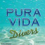 @pura_vida_divers's profile picture