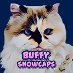 @buffysnowcaps's profile picture on influence.co