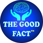 @the_good_fact's profile picture on influence.co