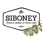 @cafesiboney's profile picture on influence.co