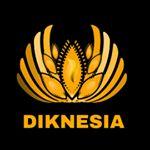 @diknesia's profile picture