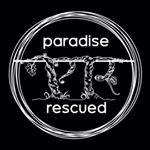 @paradiserescued's profile picture