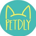 @petdly's profile picture