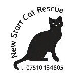 @newstartcatrescue's profile picture on influence.co