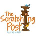 @scratchingpostcatrescue's profile picture