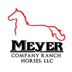 @meyercompanyranchhorses's profile picture on influence.co