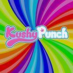 @kushypunchlife's profile picture on influence.co