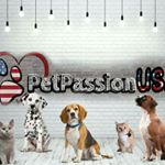 @insta_pet_passion's profile picture on influence.co
