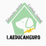 @laeducanguro's profile picture on influence.co