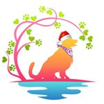 @pawsitivelygolden.boutique's profile picture