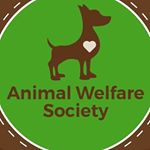 @animalwelfaresocietyindore's profile picture