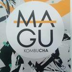 @magucha_kombucha's profile picture on influence.co