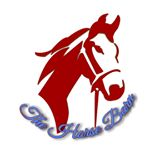 @thehorsebarn1's profile picture on influence.co