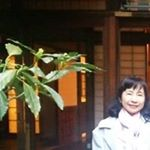 @nekocafe.catseye's profile picture