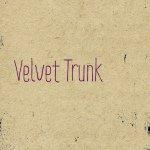 @velvettrunk's profile picture