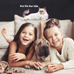 @petfitforlife's profile picture on influence.co
