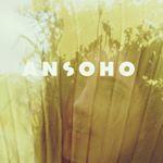 @ansoho_fashion's profile picture