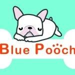@bluepoochsalon's profile picture