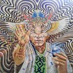 @arkana_ayahuasca_retreats's profile picture