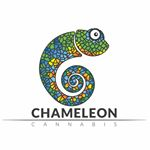 @chameleonhealth's profile picture on influence.co