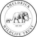 @sheldricktrust's profile picture