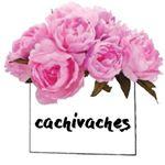@cachivachesmty's profile picture