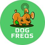 @dogfreqs's profile picture on influence.co