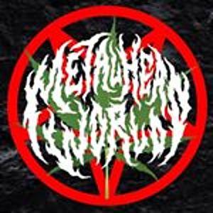 @metalheadwrld's profile picture on influence.co
