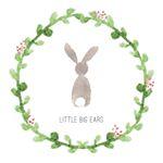 @little.big.ears's profile picture