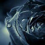 @oksana_ponomarova's profile picture on influence.co