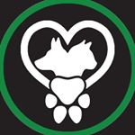@petsproject's profile picture