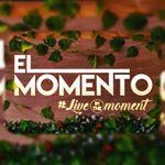 @elmomentosa's profile picture