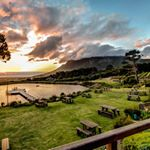 @capepointvineyardsofficial's profile picture