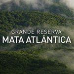 @grandereservamataatlantica's profile picture on influence.co