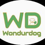 @wondurdog's profile picture on influence.co