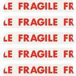 @thefragileclub's profile picture