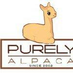 @purelyalpaca's profile picture