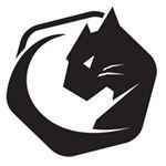@wildcatminiusa's profile picture